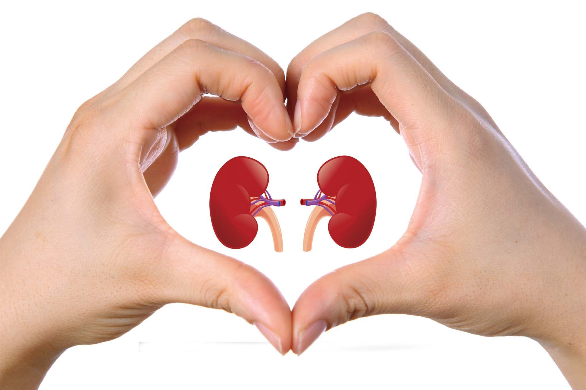 5 tips to keep kidneys healthy